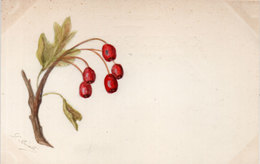 Cart Artisanale A La Main - Fleurs - Signé : L. Réalé (113145) - Peintures & Tableaux