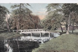 AN96 The Bridge, Cassiobury Park, Watford - 1904 Postcard - Hertfordshire