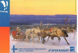 Citrus 790 Airport Aerei Lapponia Finnair Avion Aviation Airbus 320? Aiplane Finlandia Santa Claus Dog - 1946-....: Era Moderna