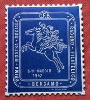 BERGAMO 1947 PRIMO RADUNO E  MOSTRA FILATELICA  ETICHETTA PUBBLICITARIA  ERINNOFILO - Erinnofilia