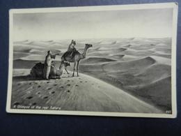 19925) A GLIMPSE OF THE REAL SAHARA NON VIAGGIATA - Non Classificati