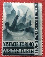 VISITATE TORINO VISITEZ TURIN ...MANIFESTAZIONI TORINESI  PROPAGANDA TURISTICA   ETICHETTA PUBBLICITARIA  ERINNOFILO - Erinnofilia