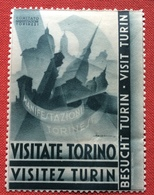 VISITATE TORINO VISITEZ TURIN ...MANIFESTAZIONI TORINESI  PROPAGANDA TURISTICA   ETICHETTA PUBBLICITARIA  ERINNOFILO - Erinnophilie