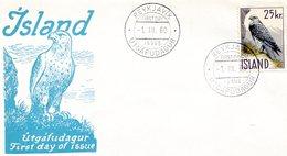 ICELAND 1960 FDC With FALCON.BARGAIN.!! - Aigles & Rapaces Diurnes