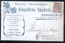 SENIGALLIA - ANCONA - 1905 - CARTOLINA COMMERCIALE - SPADONI PANIFICIO SALSAMENTERIA - Negozi