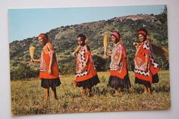 Swaziland : Married Women , Swaziland Postcard - Swasiland