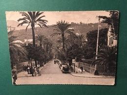 Cartolina Genova - Nervi - Viale Delle Palme  - 1941 - Genova (Genoa)