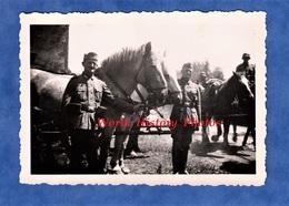 Photo Ancienne D'un Soldat Allemand - Portrait De Militaire & Chevaux D'un Attelage - WW2 Occupation German Soldier - Guerre, Militaire
