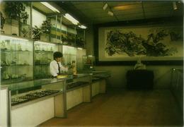 CHINA - BEIJING - WHITE PEACOCK ART WORLD - IVORY CARVING - JADE WARE - VINTAGE POSTCARD 1980s ( BG3191) - Chine
