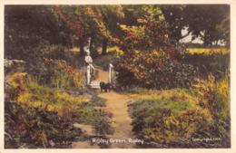 R191135 Ripley Green. Ripley. CHA. Tuck - Cartoline