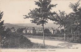 14 - HOULGATE - Panorama - Houlgate