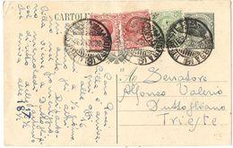 R982) V.E.III 1919 CARTOLINA POSTALE 15 CENT. LEONI MILL.23 - 1900-44 Vittorio Emanuele III