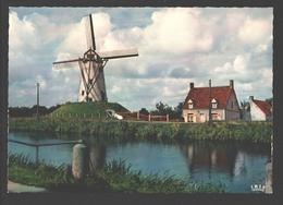 Damme - De Molen / Moulin / Mill - Damme