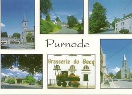 PURNODE - Brasserie Du Bocq. Multivue - Yvoir