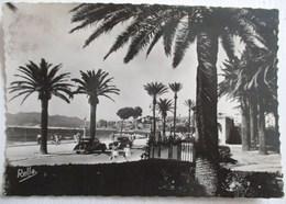 CPA 41 CANNES 1947 LA COTE D AZUR LA CROISETTE  E. RELLA NICE CITROEN TRACTION AVANT - Cannes
