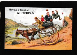 UK-Having A Jaunt At Whitehead, Diecut Foldout 1910s - Antique Postcard - United Kingdom
