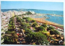 CPA 10/5008 CANNES LA CROISETTE LE PALM BEACH ET L ILE SAINTE MARGUERITE 1979 DS CITROEN MERCEDES PEUGEOT YVON - Cannes