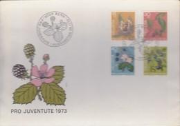 Svizzera - 1973 - Pro Juventute - Nn.943/946 - Busta FDC. - FDC
