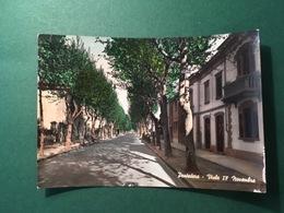 Cartolina Pontedera - Viale IV Novembre - 1963 - Pisa