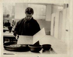 Numismatica NUMISMATIEK  COINS CURRENCY Fonds  Victor FORBIN (1864-1947) - Profesiones