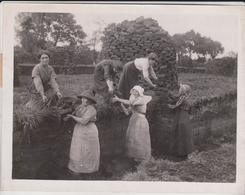 THE PEAT WORKERS AT ASCOTT NEAR BRIDGWATER   Fonds Victor FORBIN (1864-1947) - Métiers