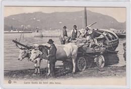COMO?-ALTA ITALIA-CARRO TIRATO DA BUOI--CARTOLINA NON VIAGGIATA ANNO 1915-1925 - Como