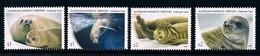 AUSTRALIAN ANTARCTIC TERRITORY (AAT) • 2018 • Crabeater Seals • MNH (4) - Neufs