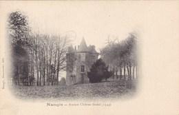 Seine-et-Marne - Nangis - Ancien Château Féodal (1544) - Nangis
