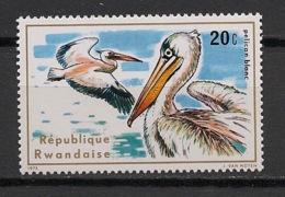 Rwanda - 1973 - N°Yv. 635 - Oiseau / Bird / Pelican - Neuf Luxe ** / MNH / Postfrisch - Pélicans