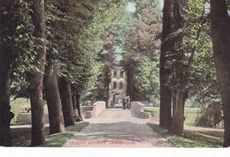England Cambridgeshire Cambridge Trinity Avenue Postcard Unused Good Condition - Cambridge