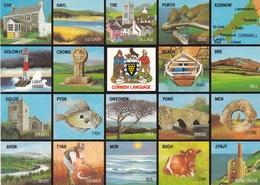 England Cornwall The Cornish Language Postcard Unused Good Condition - England