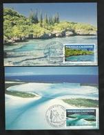 N.C.   2 Cartes Maximum  Premier Jour Nouméa Le 13/02/1991 Poste Aérienne  N°276 Et 277 Paysages  Calédoniens  TB - Luftpost