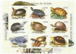 GUINEA  H/B   TEMA   TORTUGAS   MNH  ** - República De Guinea (1958-...)