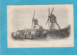 Saumur. - Deux Vieux Moulins à Vent. - Saumur