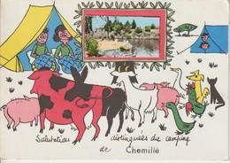 """49 CHEMILLE 1960 ? Salutations Distinguées Du Camping """"Bord De La Loire, Petite Animation"""" - Chemille"""