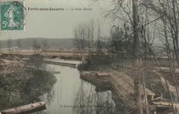 77 - LA FERTE SOUS JOUARRE - Le Petit Morin - La Ferte Sous Jouarre