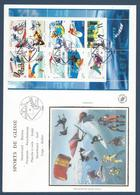 France FDC - Premier Jour - YT Bloc N° 76 - Grand Format - Collection Jeunesse - 2004 - FDC