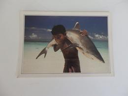 Maldives, Les Eaux Transparentes De L'Océan Indien. - Maldives