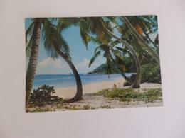Seychelles, Anse Intendance. - Seychelles