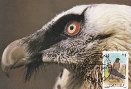 WWF - 034,34 - CM-MC - € 1,19 - 20-1-1986 - M1 - Lammergeier - Lesotho 1032212 - W.W.F.