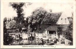 45 CHATILLON COLIGNY - Le Moulin De La Fosse - Chatillon Coligny