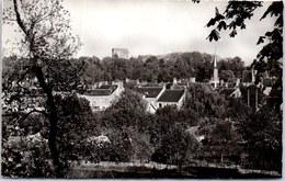 45 CHATILLON COLIGNY - Vue Générale De La Commune. - Chatillon Coligny