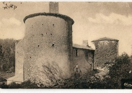 86 - Chalandray : Le Vieux Château - Francia
