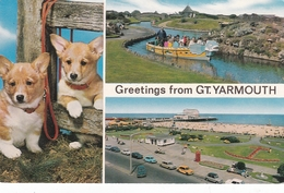England Norfolk Great Yarmouth Various Views Postcard Great Yarmouth 1978 Postmark Unused Good Condition - Great Yarmouth