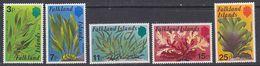 Falkland Islands 1979 Kelp/Seaweed 5v ** Mnh (42489C) - Falklandeilanden
