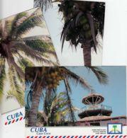 CUBA - 1999 - Lot De 3 Entiers Postaux Neufs - Cocotiers - Cuba