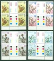 Falkland Islands Dep: 1981   Plants        MNH Gutter Blocks Of 4 - Falkland Islands