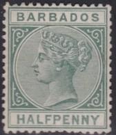 Barbados     .   SG  .   89     .   (*)       .    No Gum     .   /    .   Geen  Gom - Barbados (...-1966)