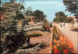Montalivet - L'Avenue Principale - Frankreich