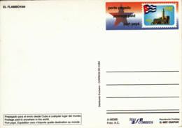 CUBA - Entier Postal Neuf -  Flamboyant - Kuba
